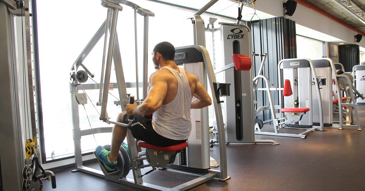 workout machine for back