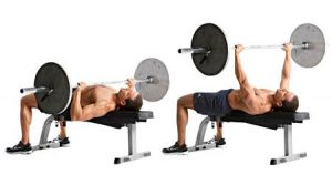 flat-barbell-bench-press