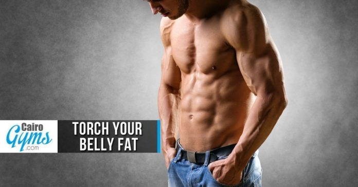 Torch Your Belly Fat