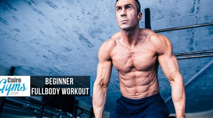 Beginner Fullbody Workout