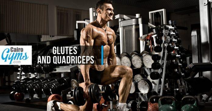 Glutes and Quadriceps