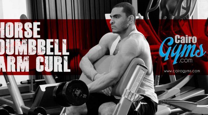 Biceps and Triceps Advanced Trainig