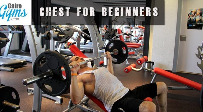 Chest Beginners