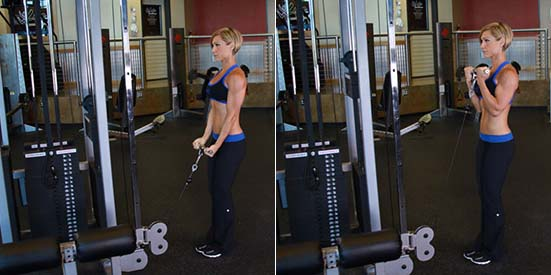 STANDING HIGH-PULLEY CABLE BICEPS CURL