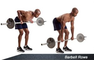 5-back-moves-barbell-rows