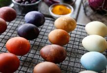 Natural Eggs Coloring