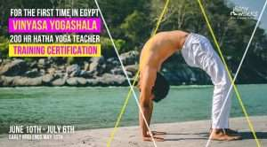 Vinyasa Yogashala Training Certification